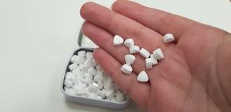 Diverso doces brancos pequenos na palma humana da mão foto de stock royalty free