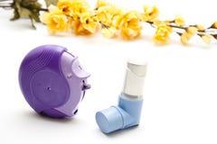 Diverso inhalador del asma Imagen de archivo