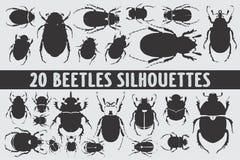 Diverso sistema del diseño de 20 siluetas de los escarabajos ilustración del vector