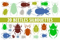 Diverso sistema del diseño de 20 siluetas de los escarabajos libre illustration