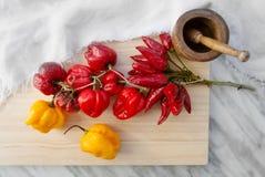 Diverso tipo de pimientas de chile secadas Fotografía de archivo