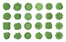 Diversos árboles, arbustos y arbustos, visión superior para el plan de concepción del paisaje Ejemplo del vector, aislado en el f ilustración del vector