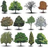 Diversos árboles del vector ilustración del vector