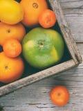 Diversos agrios en una caja de madera: mandarinas, naranjas, encanto, limón Visión desde arriba Foto de archivo libre de regalías