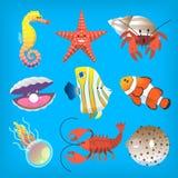 Diversos animales marinos que usted puede ver en el submarino profundo o en la playa foto de archivo