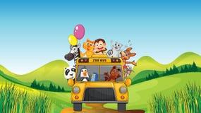 Diversos animales y autobús del parque zoológico Foto de archivo