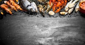 Diversos camarón, crustáceos y langostas marinos en la red de pesca Fotos de archivo libres de regalías