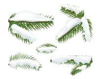 Diversos casquillos de la nieve del witj de las ramas de árbol de navidad ilustración del vector