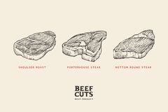 Diversos cortes de la carne determinados: lleve a hombros la carne asada, filete de porterhouse, filete redondo inferior ilustración del vector