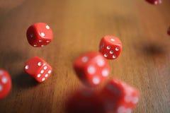 Diversos dados vermelhos de rolamento caem em uma tabela Fotografia de Stock Royalty Free