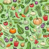Diversos dibujos de las verduras Imagen de archivo