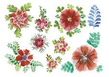 Diversos estilos de los remolinos hermosos de la acuarela Foto de archivo libre de regalías
