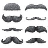 Diversos estilos del sistema realista masculino de los bigotes Chevron, Dali, ingl?s, manillar, imperial, pantalla, cepillo del p libre illustration