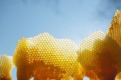 Diversos fragmentos do favo de mel na luz solar brilhante para o fundo claro do céu Tiro exterior horizontal fotos de stock