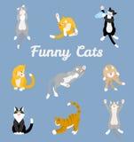 Diversos gatos de la historieta fijados Imágenes de archivo libres de regalías