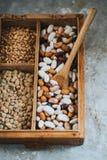 Diversos habas y granos en caja de madera Imagen de archivo