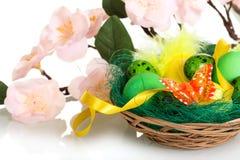 Diversos huevos de Pascua en cesta y rama con las flores aisladas Fotos de archivo libres de regalías
