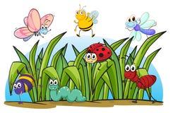 Diversos insectos e hierba stock de ilustración