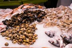 Diversos mariscos en el hielo en el mercado de pescados de la calle Fotos de archivo libres de regalías
