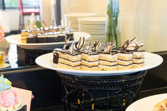 Diversos pedazos de la torta de chocolate y de vainilla en plato Imagen de archivo libre de regalías