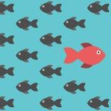 Diversos pescados únicos rojos stock de ilustración
