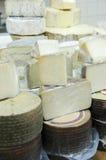 Diversos quesos Imágenes de archivo libres de regalías