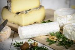 Diversos quesos franceses Imagen de archivo libre de regalías