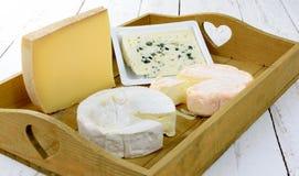 Diversos quesos franceses de la bandeja Fotografía de archivo