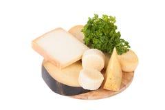 Diversos quesos y un manojo de perejil que miente en un isolat del tablero Foto de archivo libre de regalías