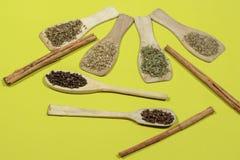 Diversos tipos das especiarias no fundo verde Fotos de Stock Royalty Free