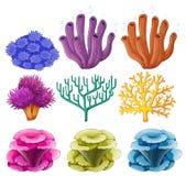 Diversos tipos de arrecife de coral libre illustration