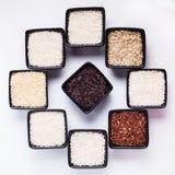 Diversos tipos de arroz Fotos de archivo