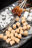Diversos tipos de azúcar Imágenes de archivo libres de regalías