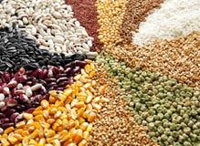 Diversos tipos de cereales y de legumbres, foto de archivo
