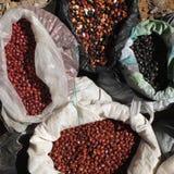 Diversos tipos de feijões. Imagem de Stock Royalty Free