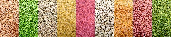 Diversos tipos de granos Fotos de archivo