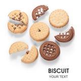 Diversos tipos de modelo del chocolate de la fresa de la galleta de las galletas imágenes de archivo libres de regalías