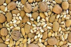 Diversos tipos de nueces clasificaron las nueces, las almendras y los pistachos fotografía de archivo