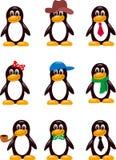Diversos tipos de pingüinos Imagen de archivo