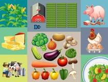 Diversos tipos de productos alimenticios en la granja ilustración del vector