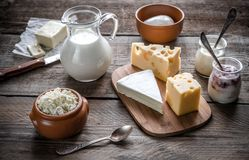 Diversos tipos de productos lácteos Imagen de archivo