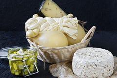 Diversos tipos de queso en un fondo negro Disco del queso imagen de archivo libre de regalías