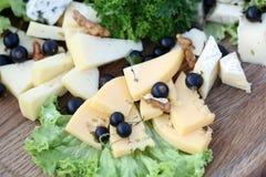 Diversos tipos de quesos gastrónomos Imagenes de archivo