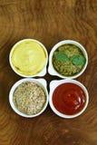 Diversos tipos de salsas Fotos de archivo libres de regalías