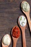 Diversos tipos de salsas Imagenes de archivo