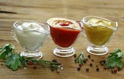 Diversos tipos de salsas en salsas Imágenes de archivo libres de regalías