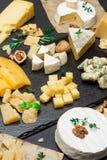 Diversos tipos del queso - brie, camembert, el Roquefort y Cheddar en el hormigón Fotos de archivo libres de regalías