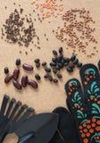 Diversos tipos semillas vegetales, pala, rastrillo y guantes negros del jardín Imagen de archivo