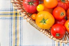Diversos tomates orgánicos escogidos frescos en una cesta Fotografía de archivo