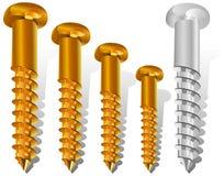 Diversos tornillos de la talla Imagen de archivo libre de regalías